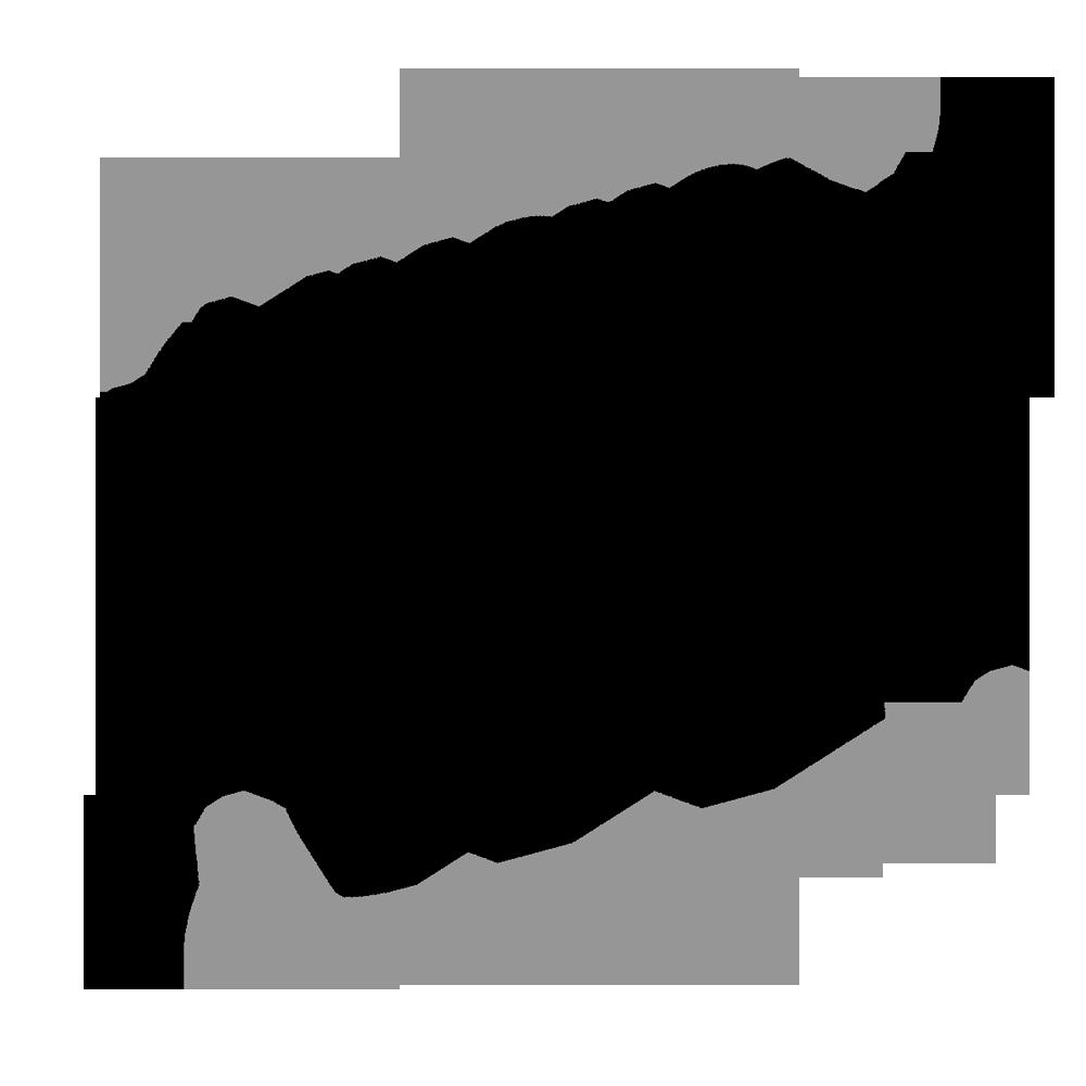 логотип Дымоходы AWT